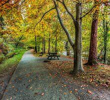 Autumn Stroll by Ian Mitchell