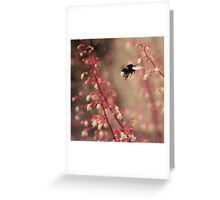 Busy Buzzy Bottom Greeting Card