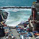 The small harbour of Riomaggiore by Arie Koene