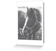 95/365 Greeting Card