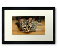 I Know You're There Framed Print
