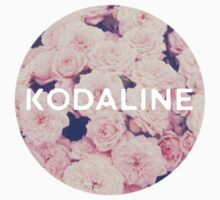 Kodaline - Flowers by bicwang