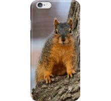 Did you bring my snack? iPhone Case/Skin