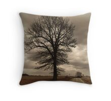 Winter in Kansas Throw Pillow