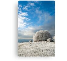 Heavy Frost Canvas Print