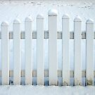 White and snow-white by Arie Koene