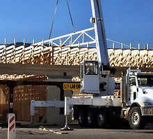 Roof Truss, Crane & Hydraulic Outriggers by ptosis