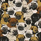 Pug Obsession by OuttaWhack