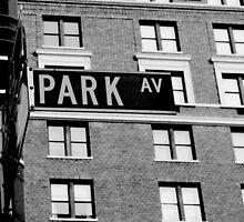 Park Ave - New York City by jennisney