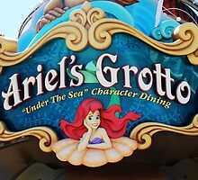 Ariel's Grotto - Disneyland Resort by jennisney