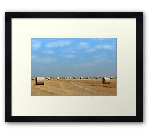 field with straw bales Framed Print