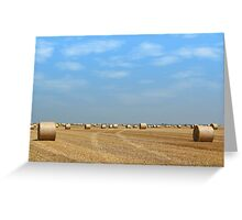 field with straw bales Greeting Card