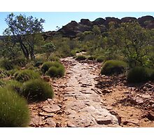 Path to help the many visitors to Kings Canyon. N. T. Aust. Photographic Print