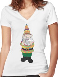 Mr Gnome and Dino Jr. Women's Fitted V-Neck T-Shirt