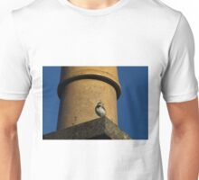 Posing Is My Second Nature Unisex T-Shirt