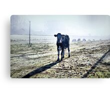 Out In The Cold Canvas Print