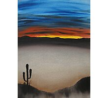 Thriving In The Desert Photographic Print