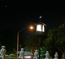 Lantern and the Crescent Moon by David Denny