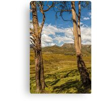 Ronny Creek, Cradle Mountain, Tasmania #3 Canvas Print