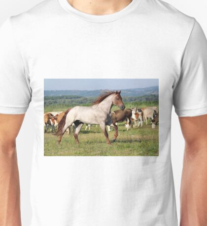 stallion running across the field Unisex T-Shirt