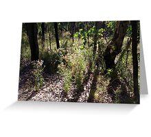 late bush  Greeting Card