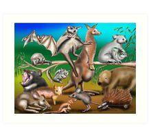 Australian Marsupials Art Print