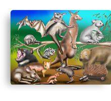 Australian Marsupials Metal Print