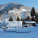 Koinokura World Heritage Village by kibishipaul