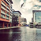 Paddington Basin by Matt Canham