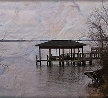 Chowan River Scene With Texture by WeeZie