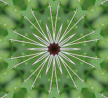 Butterfly Green by echoesofheaven