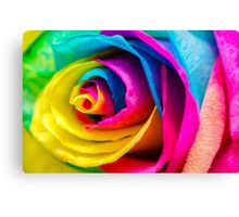 Poetic Colorful Rose Canvas Print