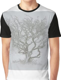 Winter Tree Graphic T-Shirt