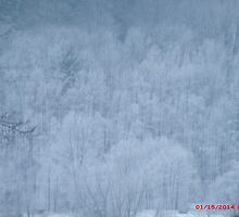 Snowy Allegany mountains by mmoeus