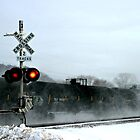 the snow train by Lynne Prestebak