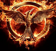 The Hunger Games Mocking Jay Part 1 Poster by Hstylesarmy