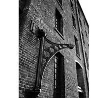 Swinging crane Photographic Print