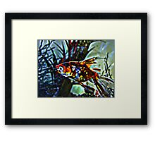 Fred the Fish as himself  Framed Print