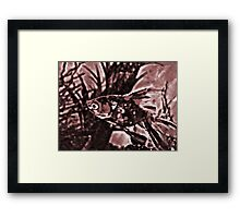 Brown Fred the Fish  Framed Print
