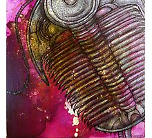 In the Time of the Trilobites Photographic Print