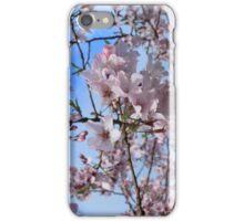CherryB  iPhone Case/Skin