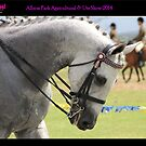 Albion Park Agriculture and Ute Show 2014, N.S.W Australia by RIVIERAVISUAL