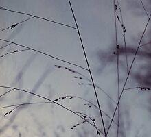 Hush by NicholeRenee