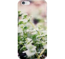 Small Beauty iPhone Case/Skin