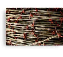 """""""Wired"""" Canvas Print"""