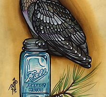 owl with mason jar and spruce twig, cascadia by resonanteye