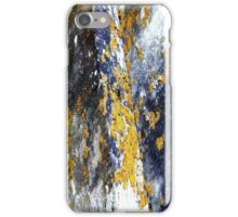 Rock Moss iPhone Case/Skin