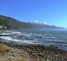 Heading to Picton by Larry Lingard-Davis
