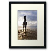 Sunset horse riding Framed Print
