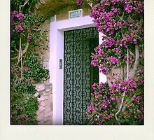 Capri Island - Amalfi Coast - Italy by anth0888